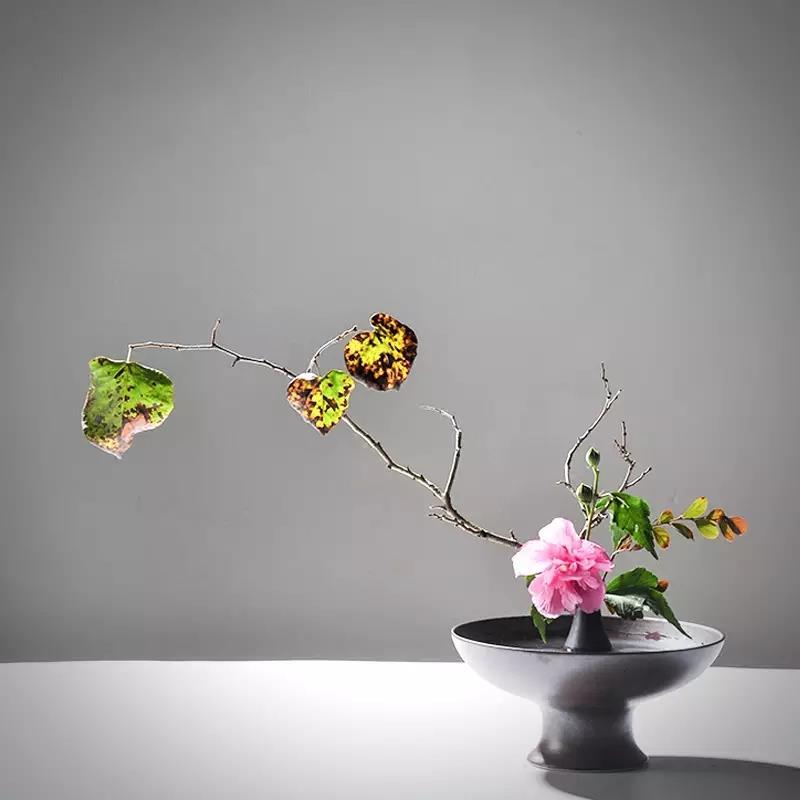 花道,一种简静唯美的生活诗和远方